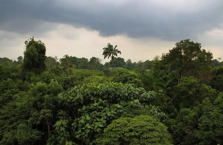 Природный парк Сунгей Булох